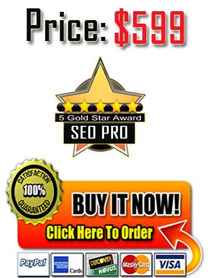 dallas seo pro services dallas